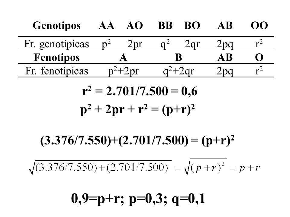 GenotiposAAAOBBBOABOO Fr. genotípicasp2p2 2prq2q2 2qr2pqr2r2 FenotiposABABO Fr. fenotípicasp 2 +2prq 2 +2qr2pqr2r2 p 2 + 2pr + r 2 = (p+r) 2 (3.376/7.