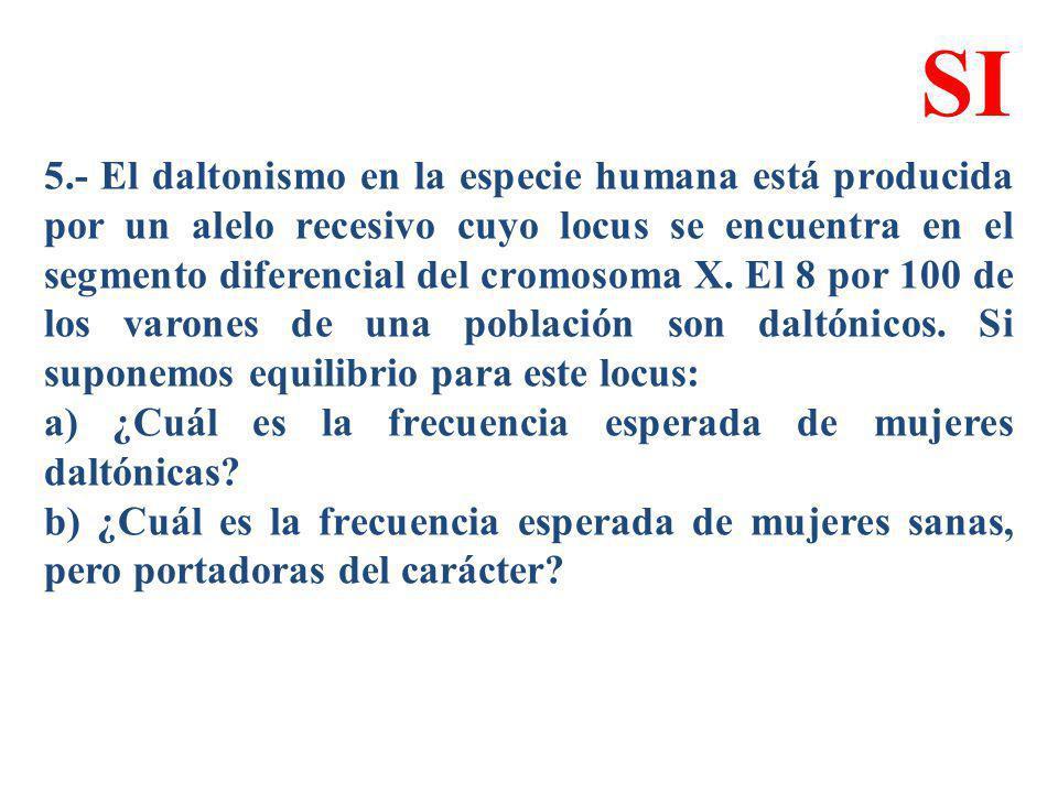 5.- El daltonismo en la especie humana está producida por un alelo recesivo cuyo locus se encuentra en el segmento diferencial del cromosoma X. El 8 p