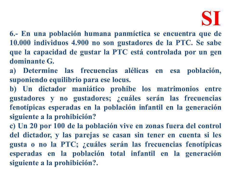 6.- En una población humana panmíctica se encuentra que de 10.000 individuos 4.900 no son gustadores de la PTC. Se sabe que la capacidad de gustar la