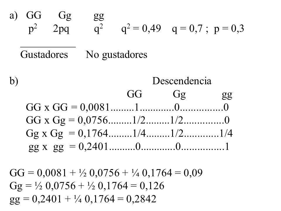 a) GG Gg gg p 2 2pq q 2 q 2 = 0,49 q = 0,7 ; p = 0,3 __________ Gustadores No gustadores b) Descendencia GG Gg gg GG x GG = 0,0081.........1..........