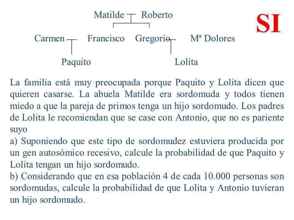 Matilde Roberto Carmen Francisco Gregorio Mª Dolores Paquito Lolita La familia está muy preocupada porque Paquito y Lolita dicen que quieren casarse.