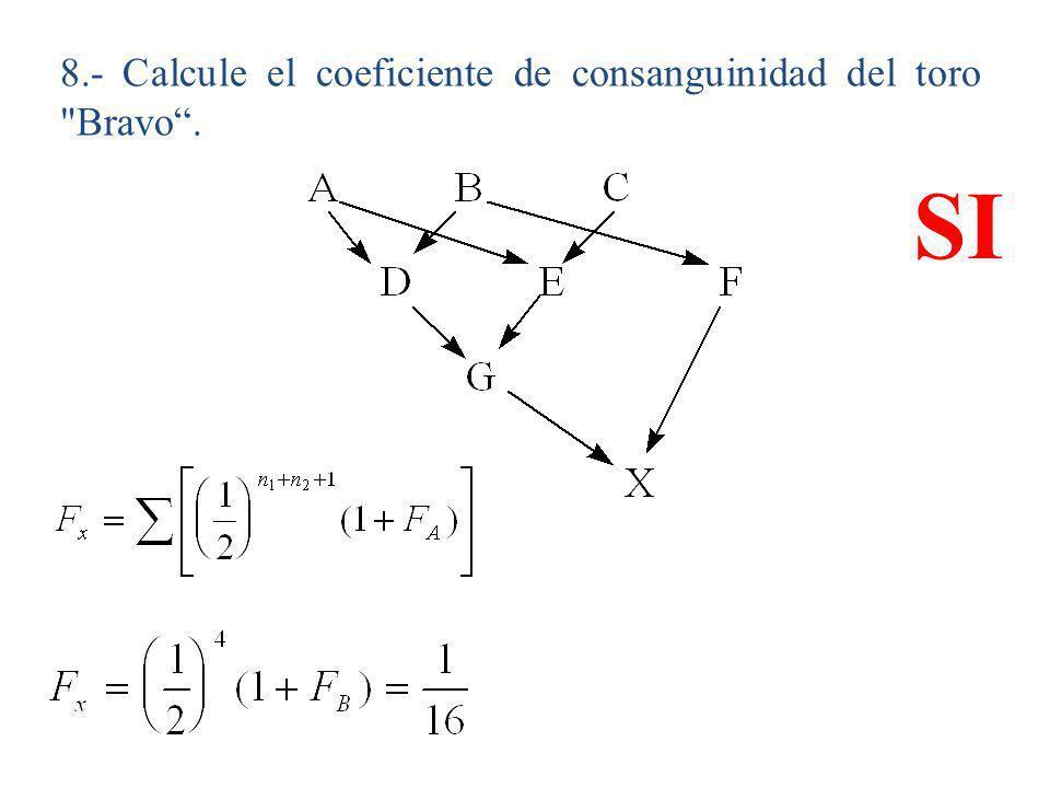 8.- Calcule el coeficiente de consanguinidad del toro