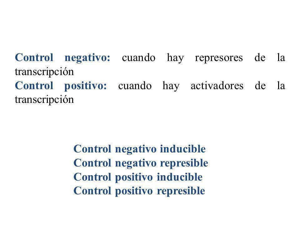 Control negativo: cuando hay represores de la transcripción Control positivo: cuando hay activadores de la transcripción Control negativo inducible Co