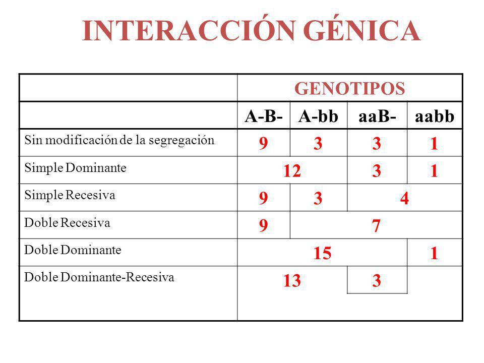 INTERACCIÓN GÉNICA GENOTIPOS A-B-A-bbaaB-aabb Sin modificación de la segregación 9331 Simple Dominante 1231 Simple Recesiva 934 Doble Recesiva 97 Dobl