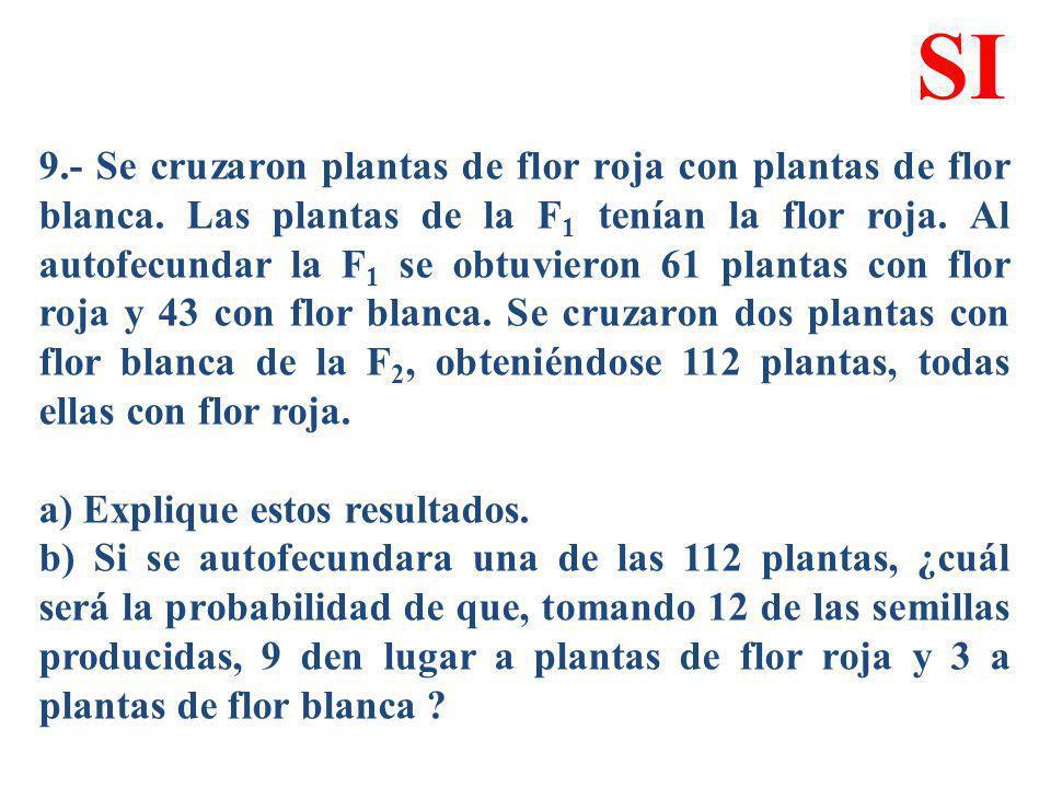 9.- Se cruzaron plantas de flor roja con plantas de flor blanca. Las plantas de la F 1 tenían la flor roja. Al autofecundar la F 1 se obtuvieron 61 pl