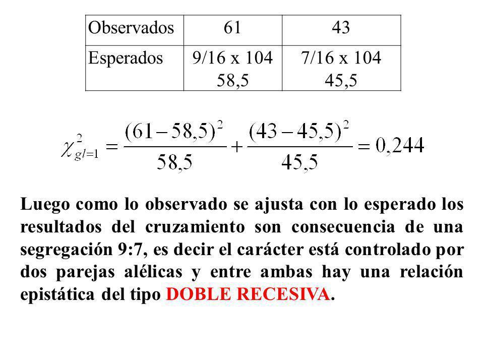 Observados6143 Esperados9/16 x 104 58,5 7/16 x 104 45,5 Luego como lo observado se ajusta con lo esperado los resultados del cruzamiento son consecuen