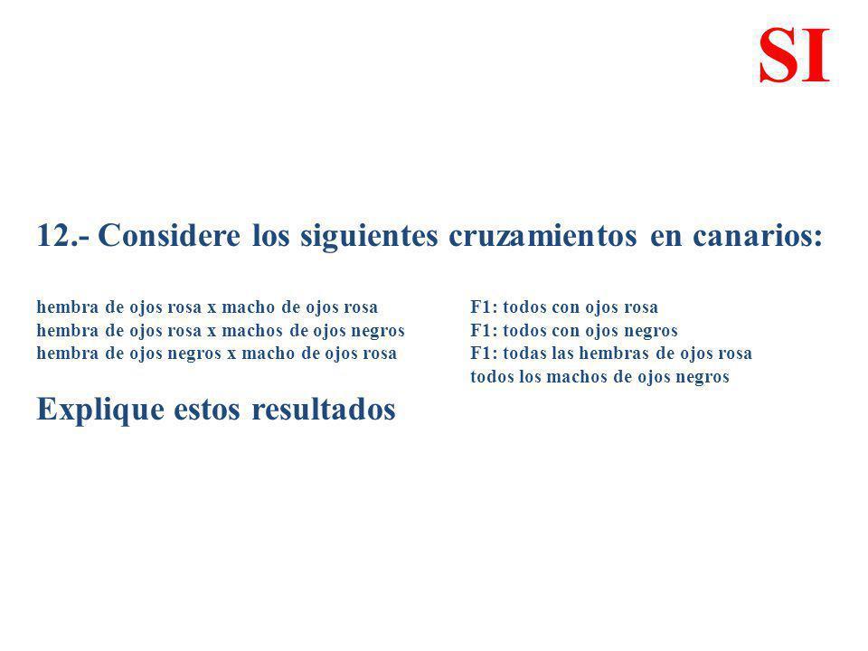 12.- Considere los siguientes cruzamientos en canarios: hembra de ojos rosa x macho de ojos rosa F1: todos con ojos rosa hembra de ojos rosa x machos