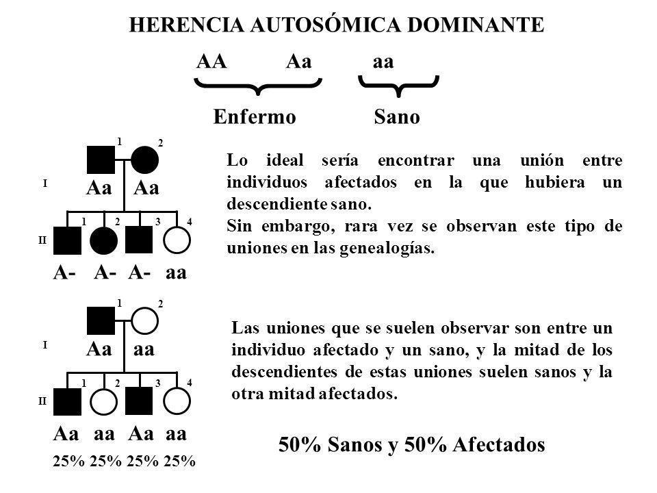 I II 1 2 123 4 Aa A- aa HERENCIA AUTOSÓMICA DOMINANTE Lo ideal sería encontrar una unión entre individuos afectados en la que hubiera un descendiente