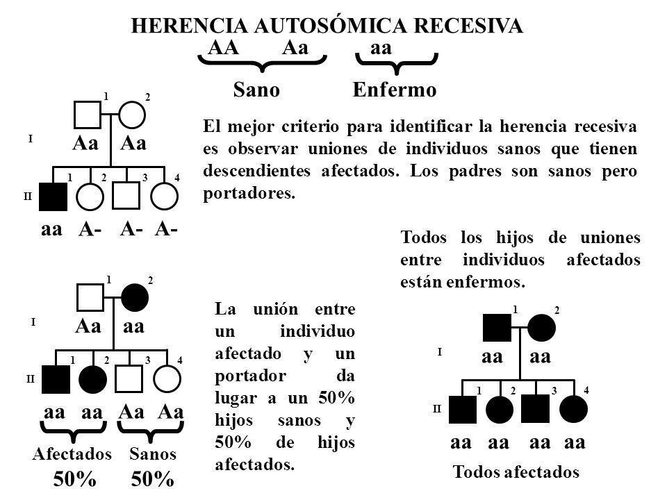 HERENCIA AUTOSÓMICA RECESIVA AA Aa aa EnfermoSano I II 1 2 123 4 Aa A- aa El mejor criterio para identificar la herencia recesiva es observar uniones