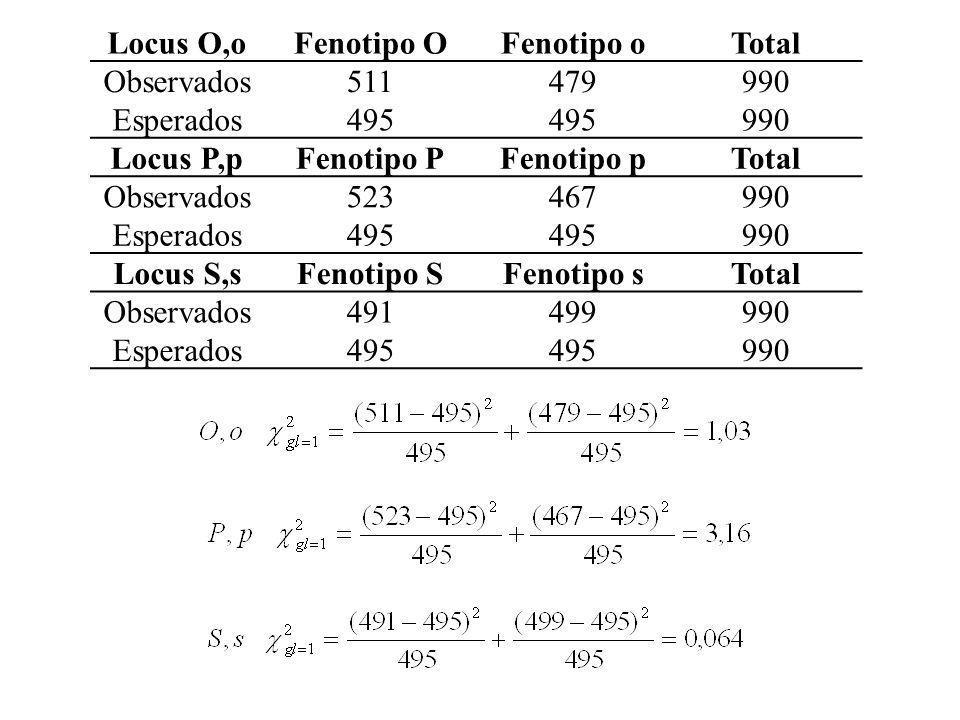 Locus O,oFenotipo OFenotipo oTotal Observados511479990 Esperados495 990 Locus P,pFenotipo PFenotipo pTotal Observados523467990 Esperados495 990 Locus