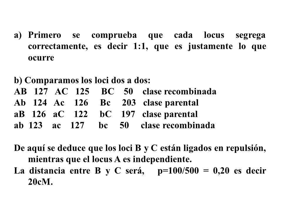 a)Primero se comprueba que cada locus segrega correctamente, es decir 1:1, que es justamente lo que ocurre b) Comparamos los loci dos a dos: AB 127 AC