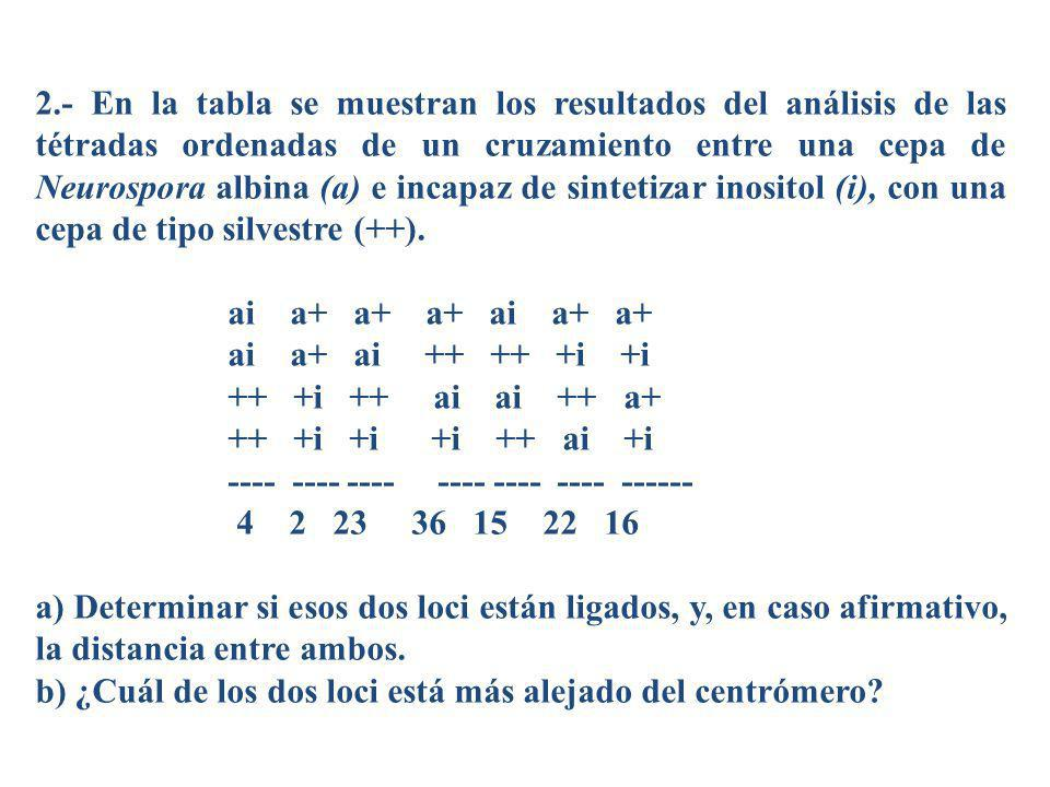 2.- En la tabla se muestran los resultados del análisis de las tétradas ordenadas de un cruzamiento entre una cepa de Neurospora albina (a) e incapaz