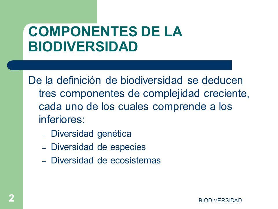 BIODIVERSIDAD 2 COMPONENTES DE LA BIODIVERSIDAD De la definición de biodiversidad se deducen tres componentes de complejidad creciente, cada uno de lo