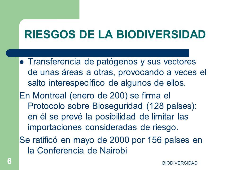 BIODIVERSIDAD 6 RIESGOS DE LA BIODIVERSIDAD Transferencia de patógenos y sus vectores de unas áreas a otras, provocando a veces el salto interespecífi