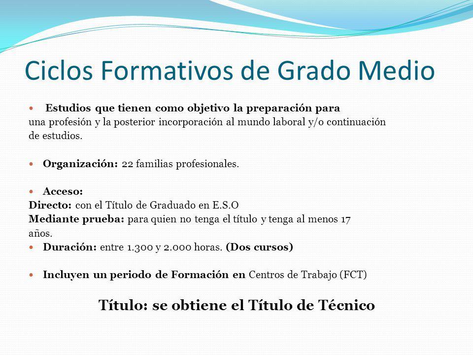 Ciclos Formativos de Grado Medio Estudios que tienen como objetivo la preparación para una profesión y la posterior incorporación al mundo laboral y/o continuación de estudios.
