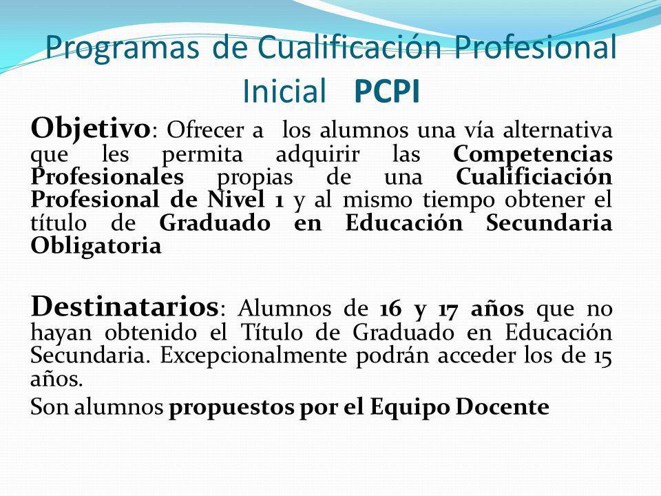 Programas de Cualificación Profesional Inicial PCPI Objetivo : Ofrecer a los alumnos una vía alternativa que les permita adquirir las Competencias Profesionales propias de una Cualificiación Profesional de Nivel 1 y al mismo tiempo obtener el título de Graduado en Educación Secundaria Obligatoria Destinatarios : Alumnos de 16 y 17 años que no hayan obtenido el Título de Graduado en Educación Secundaria.