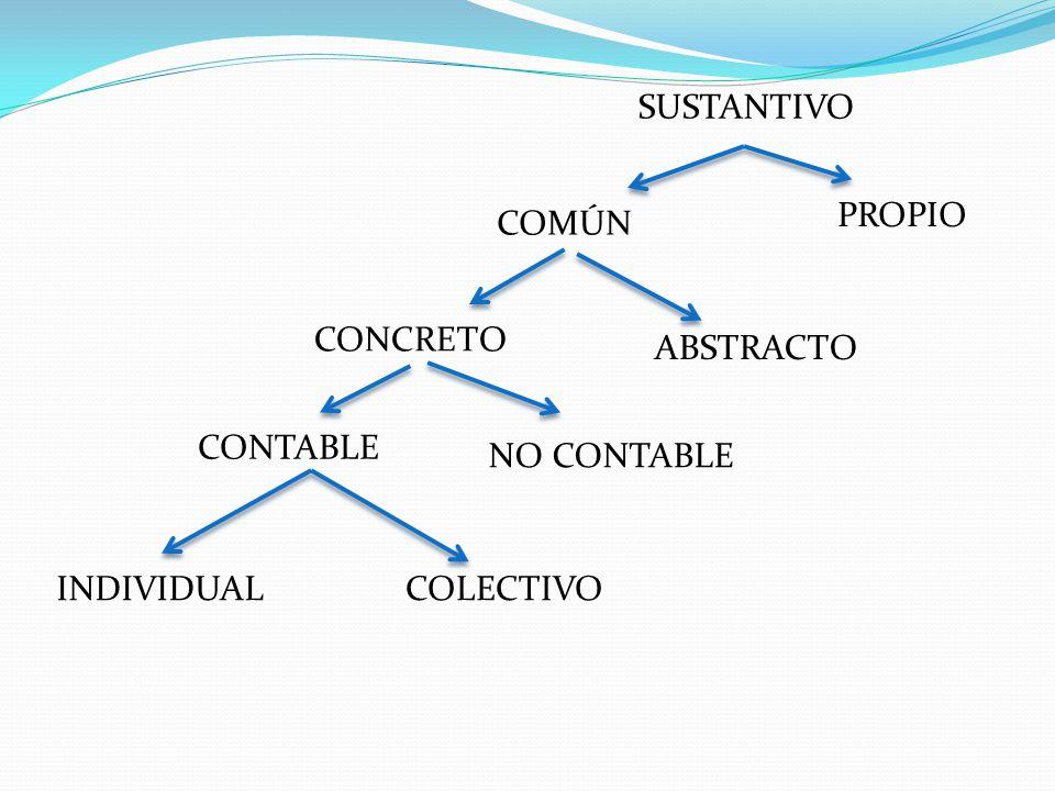 SUSTANTIVO COMÚN PROPIO CONCRETO ABSTRACTO CONTABLE NO CONTABLE INDIVIDUALCOLECTIVO