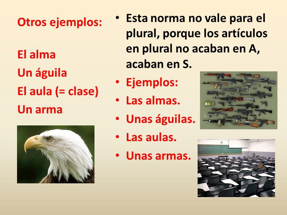 Otros ejemplos: Esta norma no vale para el plural, porque los artículos en plural no acaban en A, acaban en S. Ejemplos: Las almas. Unas águilas. Las