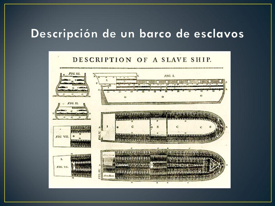 1.LA ESCLAVITUD Durante el siglo XVII ante la escasez de mano de obra se recurre a la esclavitud en Norteamérica. Salieron Llegaron sólo 40 millones d