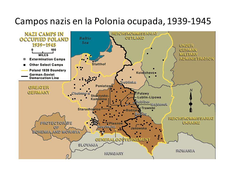 Deportaciones a Majdanek 1941-1944