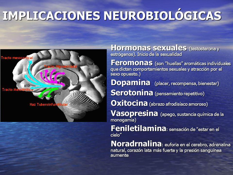 ADOLESCENCIA Sus acciones son guiadas más por la amígdala y menos por la corteza frontal les lleva a: Sus acciones son guiadas más por la amígdala y m