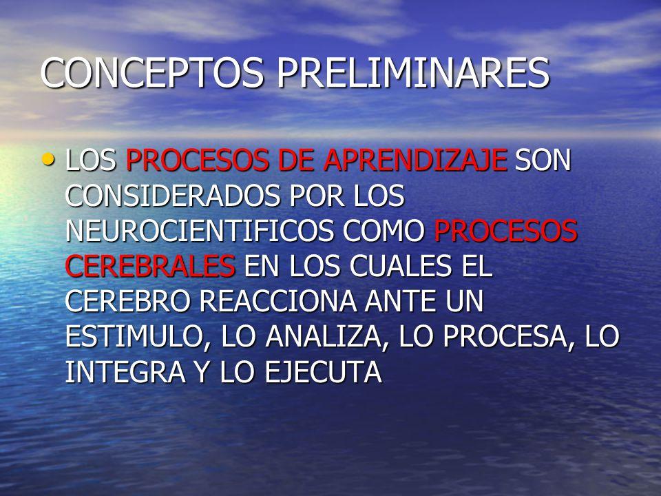 Córtex específico para el lenguaje receptivo en sujetos Bilingües Niño bilingüe maternoAdolescenteAdulto Castellano Inglés