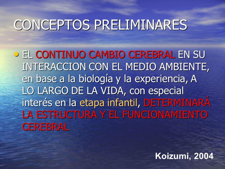 CONCEPTOS PRELIMINARES EL CONTINUO CAMBIO CEREBRAL EN SU INTERACCION CON EL MEDIO AMBIENTE, en base a la biología y la experiencia, A LO LARGO DE LA VIDA, con especial interés en la etapa infantil, DETERMINARÁ LA ESTRUCTURA Y EL FUNCIONAMIENTO CEREBRAL EL CONTINUO CAMBIO CEREBRAL EN SU INTERACCION CON EL MEDIO AMBIENTE, en base a la biología y la experiencia, A LO LARGO DE LA VIDA, con especial interés en la etapa infantil, DETERMINARÁ LA ESTRUCTURA Y EL FUNCIONAMIENTO CEREBRAL Koizumi, 2004