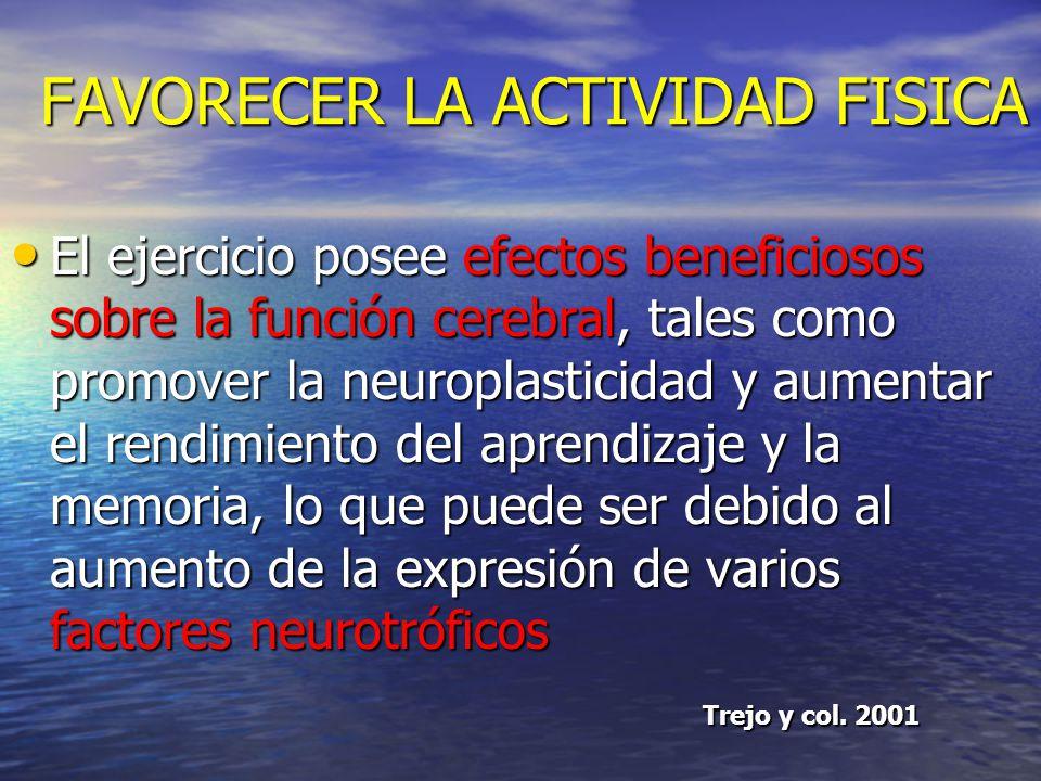 FAVORECER LA ACTIVIDAD FISICA La actividad física tiene un efecto positivo en la funcionamiento cognitivo modificando la actividad de ciertas áreas ce