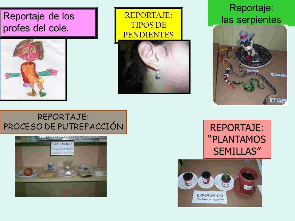 Estos son los reportajes que realizamos a lo largo de todo el curso
