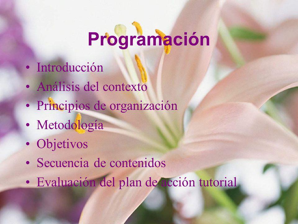 Programación Introducción Análisis del contexto Principios de organización Metodología Objetivos Secuencia de contenidos Evaluación del plan de acción