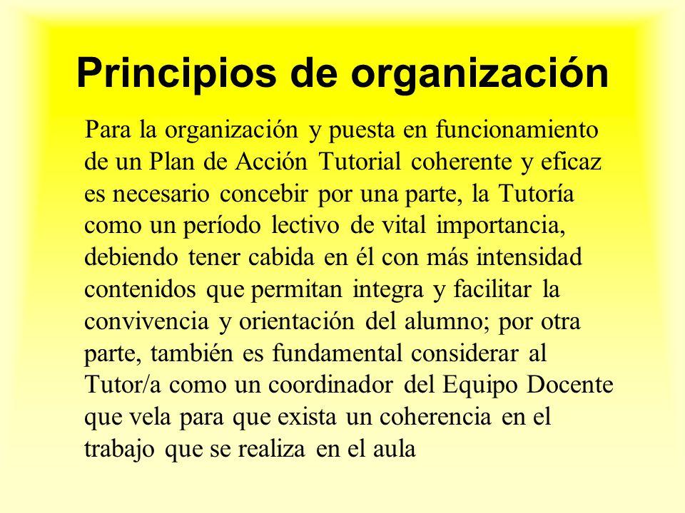 Principios de organización Para la organización y puesta en funcionamiento de un Plan de Acción Tutorial coherente y eficaz es necesario concebir por