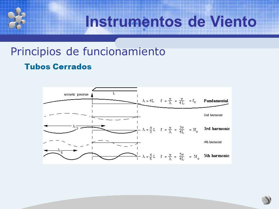 Instrumentos de Viento Principios de funcionamiento Tubos Abiertos