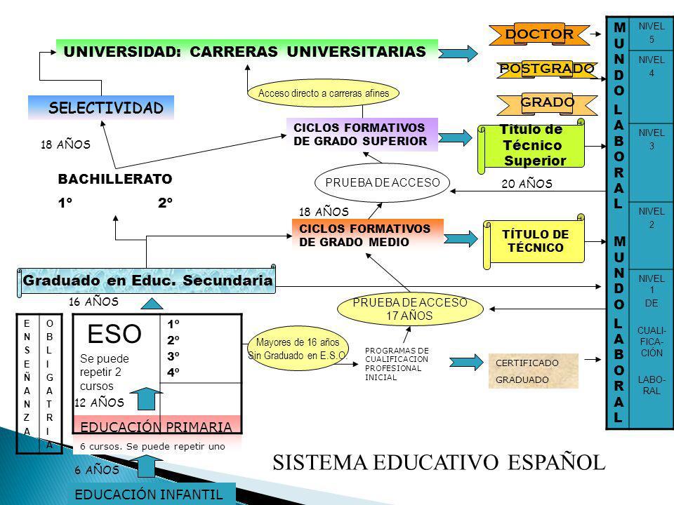 ITINERARIO C: para los alumnos/as que quieran cursar un Ciclo Formativo de Grado Medio.