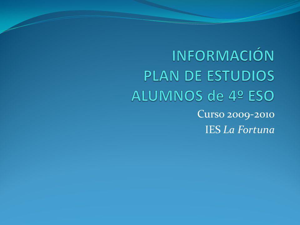 Curso 2009-2010 IES La Fortuna