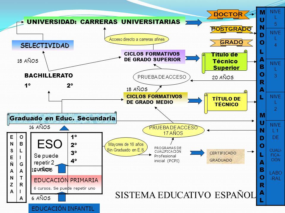SISTEMA EDUCATIVO ESPAÑOL EDUCACIÓN INFANTIL 6 AÑOS EDUCACIÓN PRIMARIA 6 cursos. Se puede repetir uno 12 AÑOS ESO Se puede repetir 2 cursos 1º 2º 3º 4