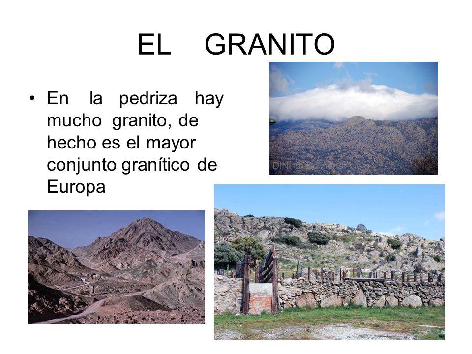 EL GRANITO En la pedriza hay mucho granito, de hecho es el mayor conjunto granítico de Europa