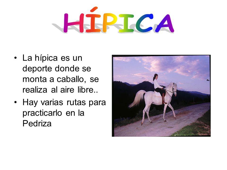 La hípica es un deporte donde se monta a caballo, se realiza al aire libre.. Hay varias rutas para practicarlo en la Pedriza