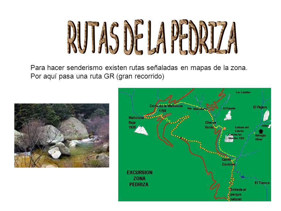 Para hacer senderismo existen rutas señaladas en mapas de la zona. Por aquí pasa una ruta GR (gran recorrido)