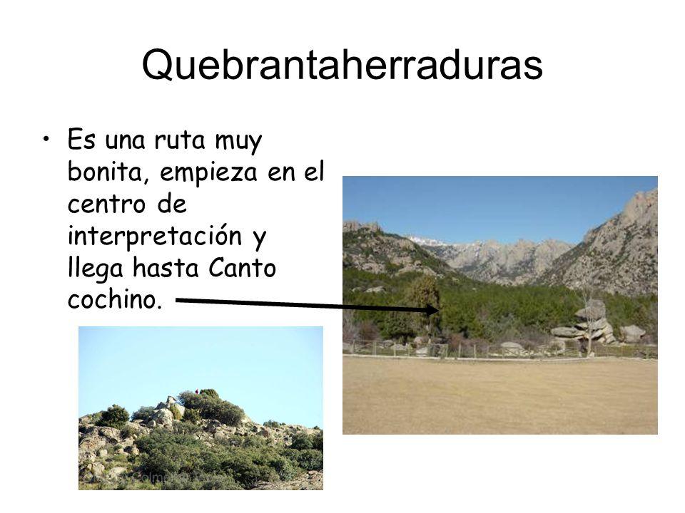 Quebrantaherraduras Es una ruta muy bonita, empieza en el centro de interpretación y llega hasta Canto cochino.