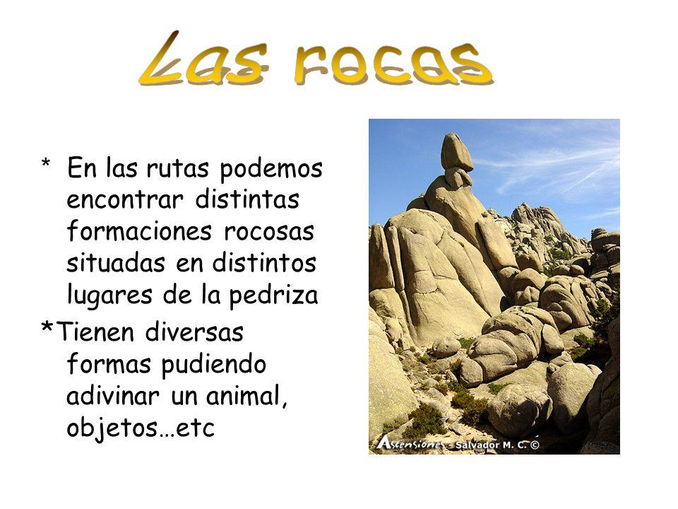 * En las rutas podemos encontrar distintas formaciones rocosas situadas en distintos lugares de la pedriza *Tienen diversas formas pudiendo adivinar u