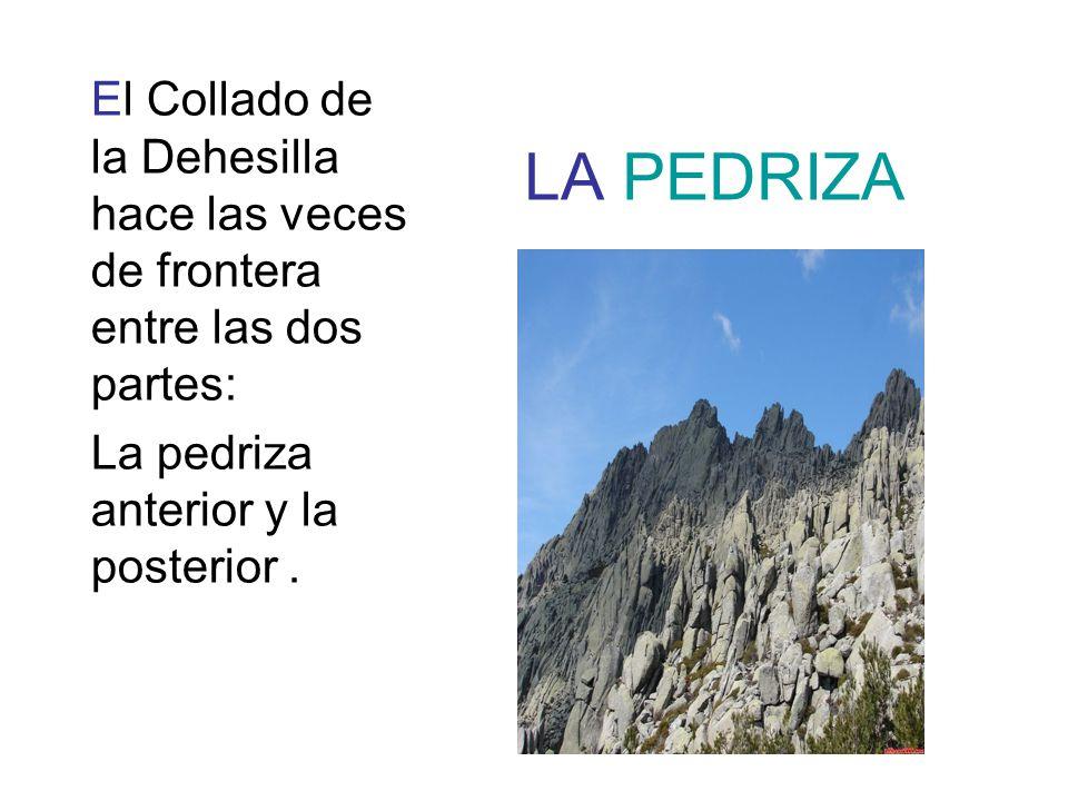 LA PEDRIZA El Collado de la Dehesilla hace las veces de frontera entre las dos partes: La pedriza anterior y la posterior.