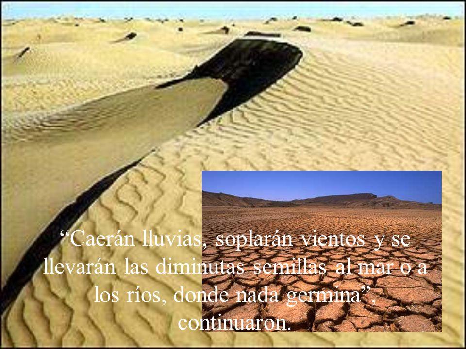 Caerán lluvias, soplarán vientos y se llevarán las diminutas semillas al mar o a los ríos, donde nada germina, continuaron.