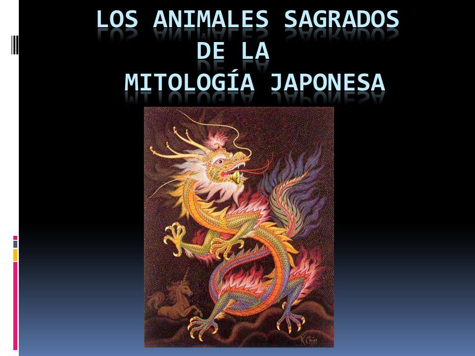Conocido como tanuki , este animal forma parte importante del folklore y la mitología japonesa, uno de los países de donde es originario.