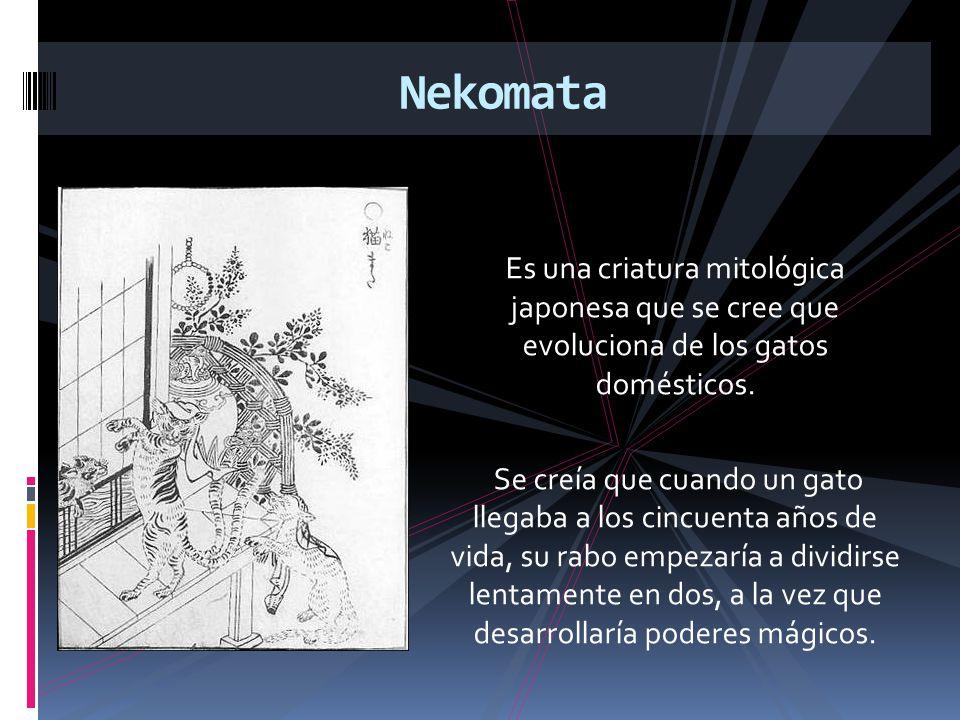 Es una criatura mitológica japonesa que se cree que evoluciona de los gatos domésticos. Se creía que cuando un gato llegaba a los cincuenta años de vi