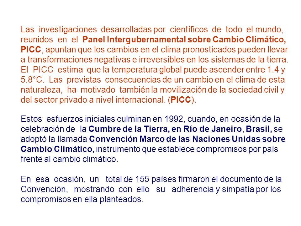 Las investigaciones desarrolladas por científicos de todo el mundo, reunidos en el Panel Intergubernamental sobre Cambio Climático, PICC, apuntan que
