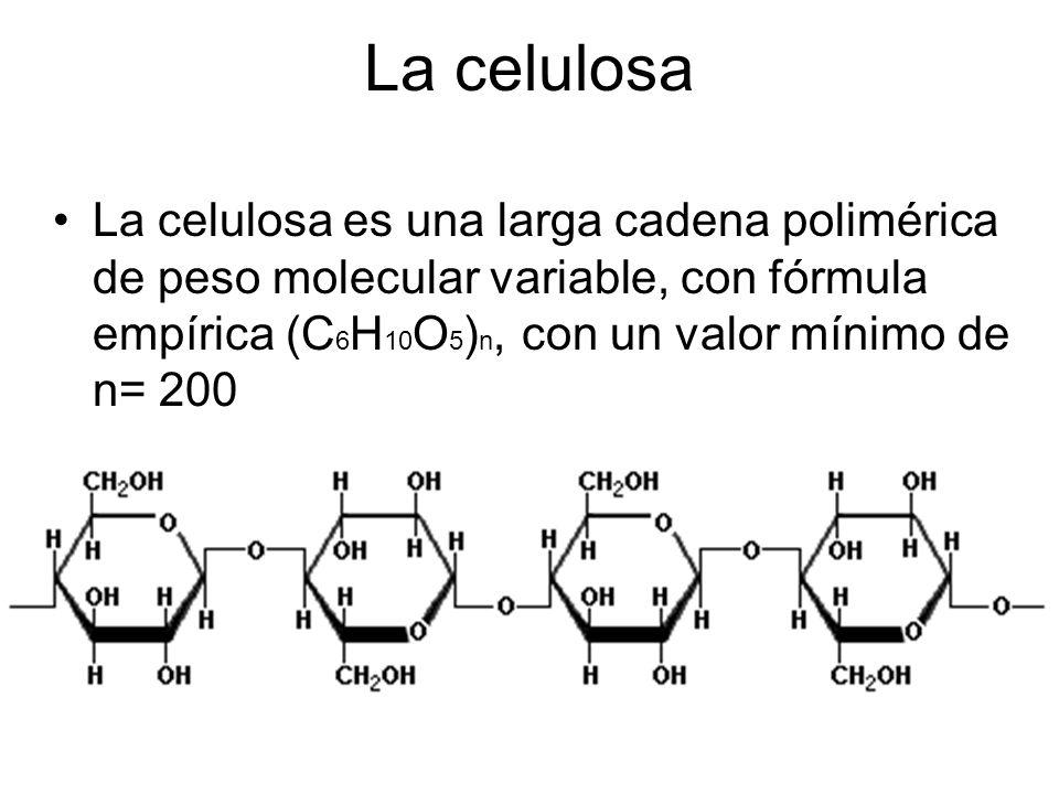 La celulosa es una larga cadena polimérica de peso molecular variable, con fórmula empírica (C 6 H 10 O 5 ) n, con un valor mínimo de n= 200 La celulo