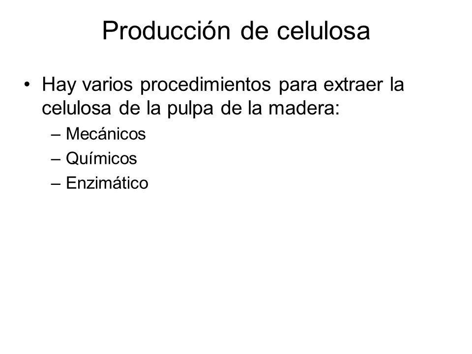 Producción de celulosa Procedimiento mecánico.