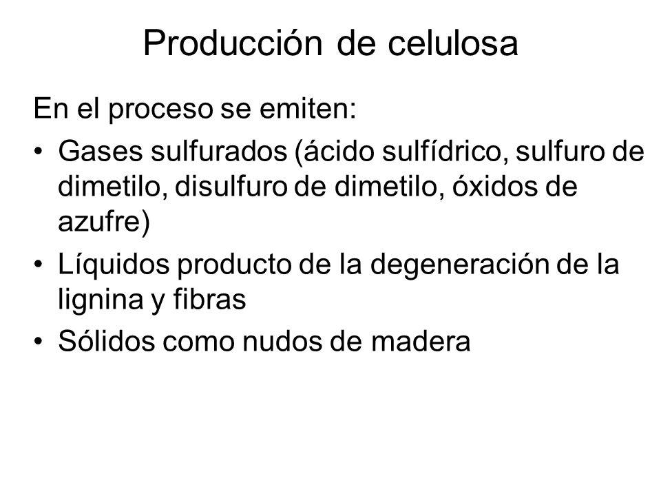 En el proceso se emiten: Gases sulfurados (ácido sulfídrico, sulfuro de dimetilo, disulfuro de dimetilo, óxidos de azufre) Líquidos producto de la deg