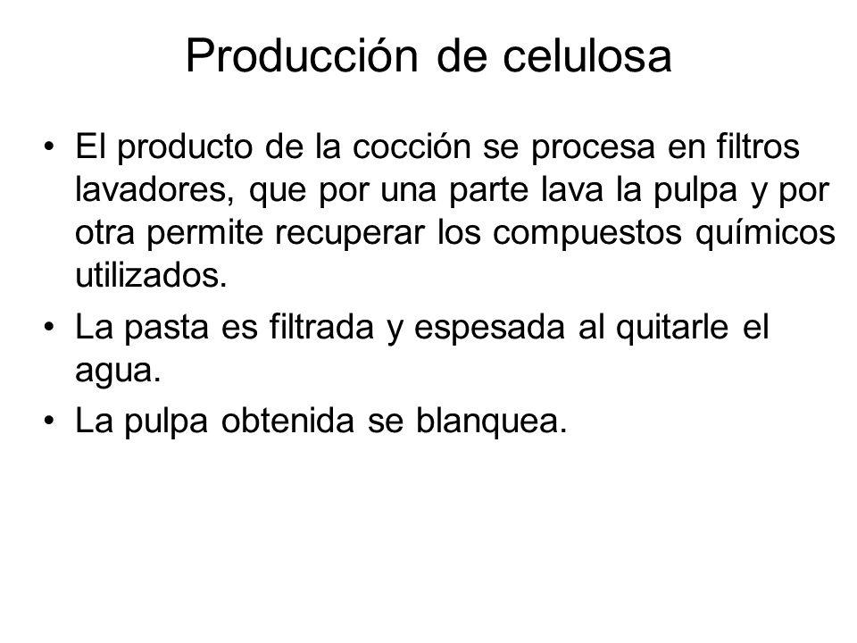 El producto de la cocción se procesa en filtros lavadores, que por una parte lava la pulpa y por otra permite recuperar los compuestos químicos utiliz