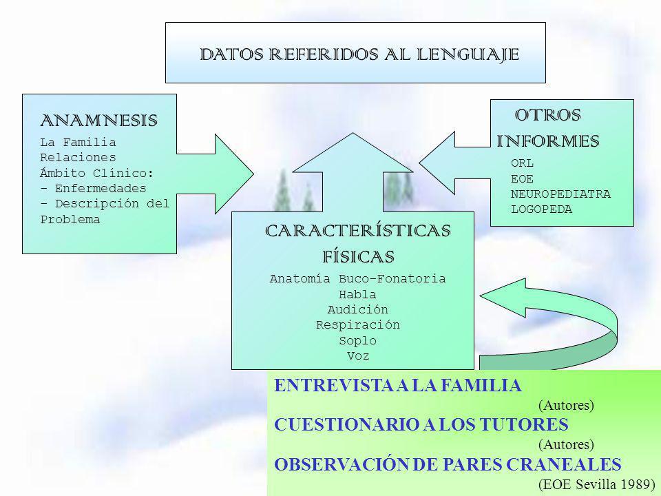 ENTREVISTA A LA FAMILIA (Autores) CUESTIONARIO A LOS TUTORES (Autores) OBSERVACIÓN DE PARES CRANEALES (EOE Sevilla 1989) ANAMNESIS La Familia Relacion